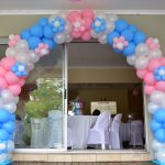He or She Daisy Arch Baby Shower